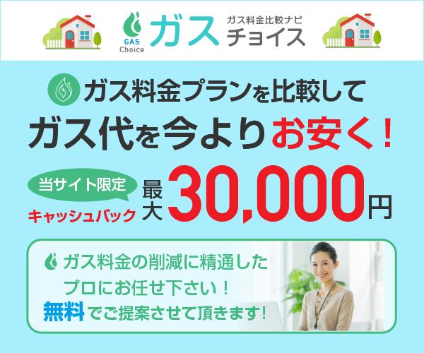 当サイト限定 最大30000円現金キャッシュバック!ガス代を今よりお安く!【ガスチョイス】のバナーデザイン